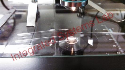 20nm capillary tubes